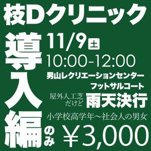 枝Dクリニック導入編のみ ¥3,000
