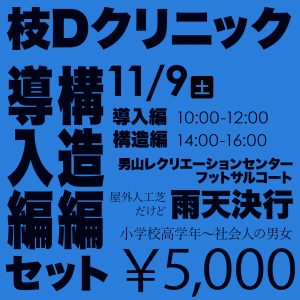 枝Dクリニック(導入編・構造編セットでお得)¥5,000