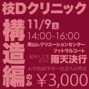 枝Dクリニック構造編のみ ¥3,000
